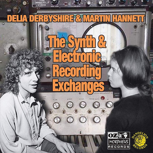 Delia Derbyshire/Martin Hannett - The Synth & Electronic Recording Exchanges LP