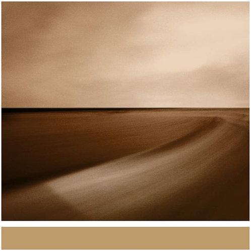 Brian Eno - Small Craft On A Milk Sea LP Released 27/11/20