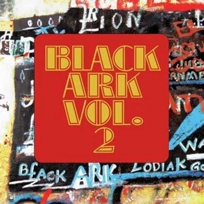 Various Artists - Black Ark In Dub Volume 2 LP Released 26/06/20