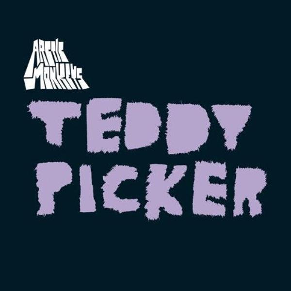 Arctic Monkeys - Teddy Picker 7