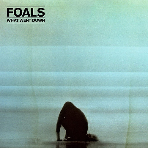 Foals - What Went Down LP