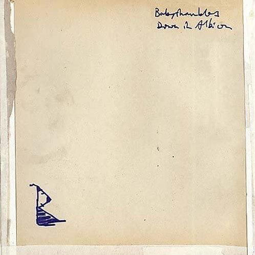 Babyshambles - Down In Albion LP