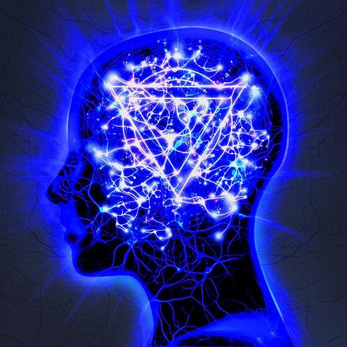 Enter Shikari - The Mindsweep LP