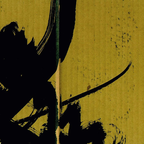 Bogdan Raczynski - Samurai Math Beats LP Released 25/09/20