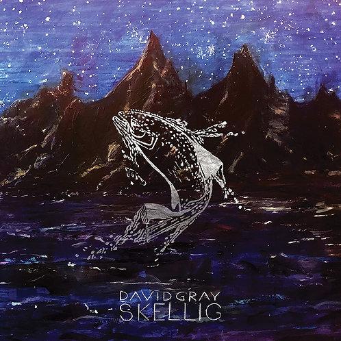 David Gray - Skellig CD Released 14/05/21
