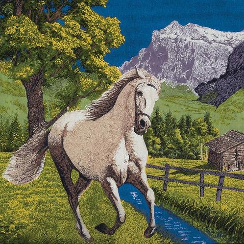 Heather Trost - Petrichor LP Released 06/11/20