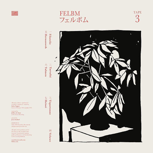 Felbm - Tape 3/Tape 4 LP Released 16/10/20