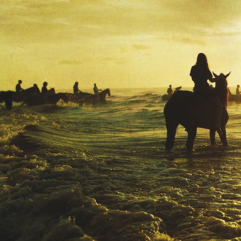 Foals - Holy Fire LP