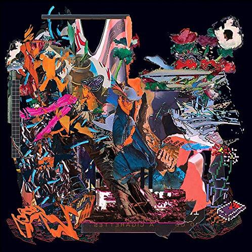 "Black Midi - John L / Despair 12"" Vinyl Released 09/04/21"