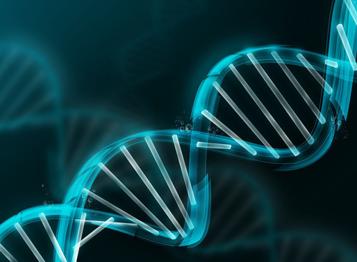 The Genetic Effects of Homeopathic Medicines