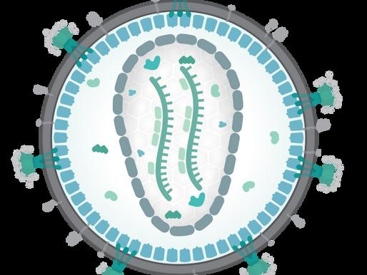 Missing Pieces Part 3 - Retroviruses