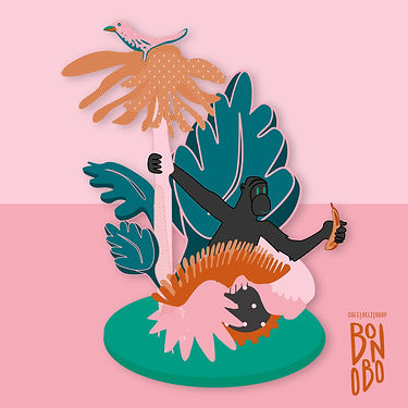 Bonobo-patternsave-ins3.jpg
