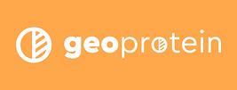 Geo Logo.png