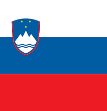 Flag - Slovenia, flat, medium_edited.png
