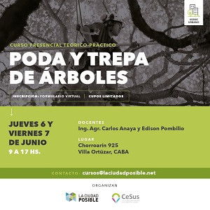 CURSO TEÓRICO-PRÁCTICO DE PODA Y TREPA DE ÁRBOLES