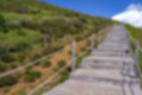 stairs-3657291_1920.jpg