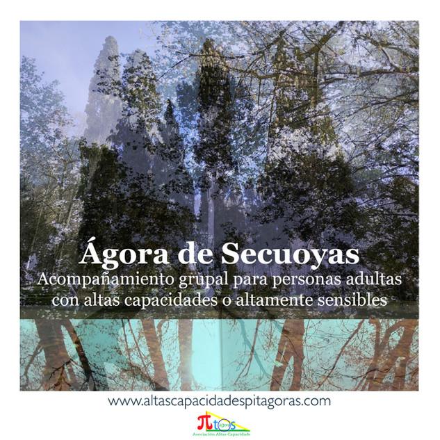 Ágora de Secuoyas