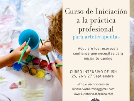 Curso de Iniciación a la práctica profesional