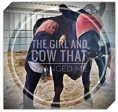 a girl and a cow