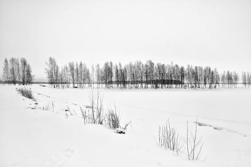 Lapland, 2017