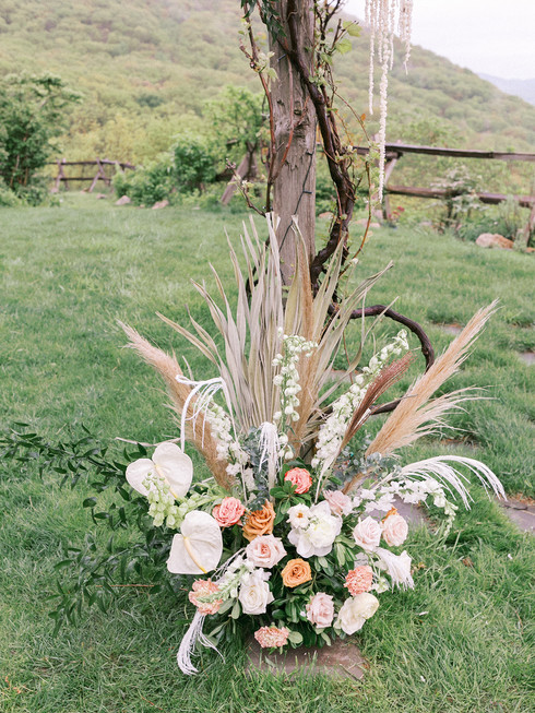 Meyline-Wes-Lambshill-wedding-3.jpg