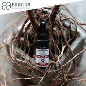 endoca-002.jpg