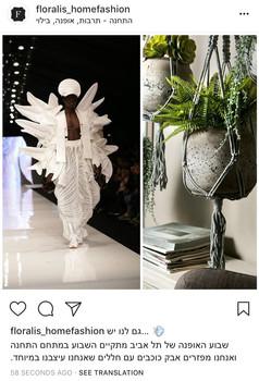 floralis instagram post