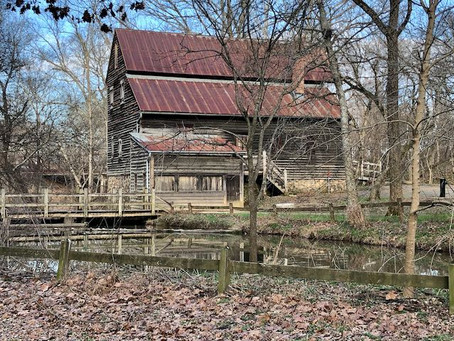 Read about Save Black Meadow Ridge in the INDY