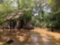 FloodedMill_2018_09_17.jpeg