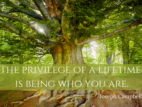 The Art of being who you are,    where you are.
