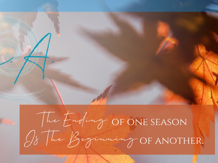 Seasons of Home: on Endings, Beginnings, and the Plot Twists of Life