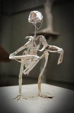 Kinetic Bird Model