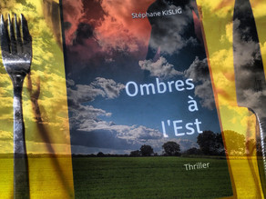 """""""Ombres à l'Est"""" un thriller idéologique !"""