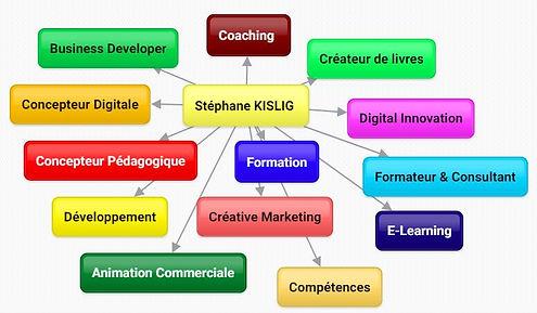 Stéphane KISLIG & Compétences Professionnelles