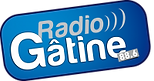 Radio Gâtine l'interview de Stéphane KISLIG pour son roman Une existence.