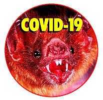 BAT-COVID.jpg