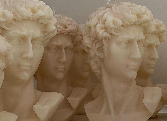 Michelangelo's David - Large