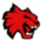 Wildcat Logo