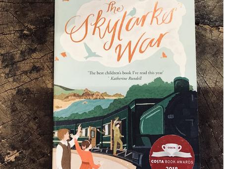 Skylark Wars by Hilary McKay