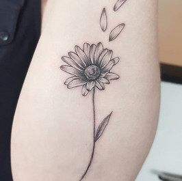 Simple and skinny daisy ♡ thanks Iona! H