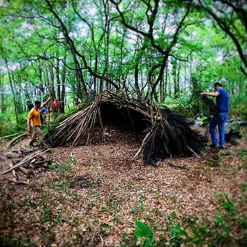 Stage de Survie en milieu forestier