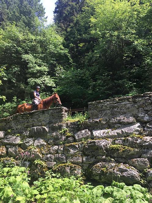 Rando Gastro à cheval