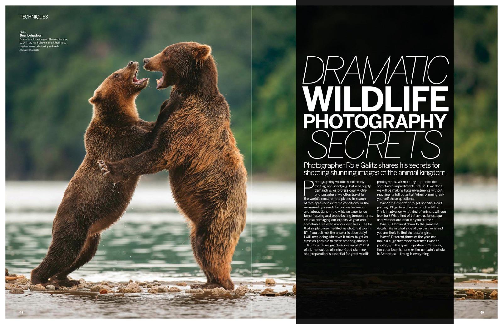 Digital Photographer 2017
