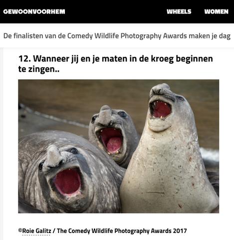 Roie Galitz - Wildlife Photgrapher