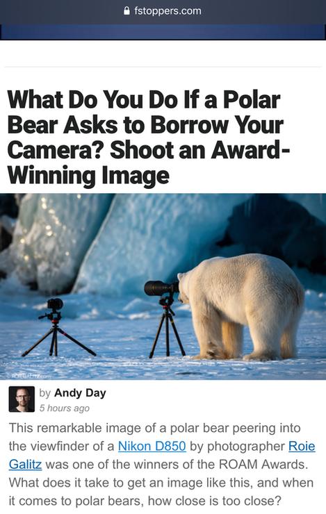 Roie Galitz Polar Bear Camera Fstoppers