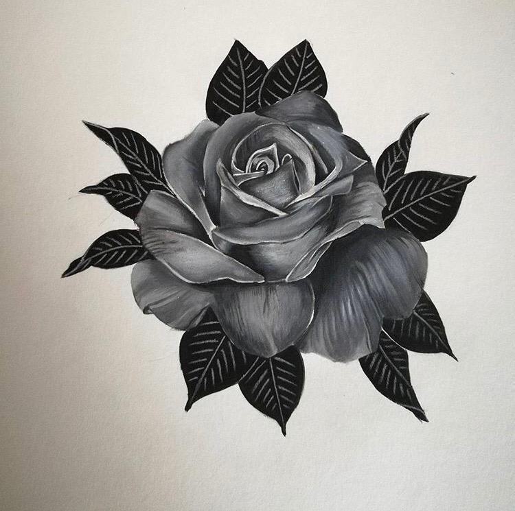 croquis rose -American Body Art