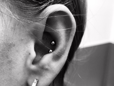 #1218 Piercing Conque | AMERICAN BODY ART