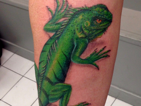 #1196 Tattoo couleur réaliste effet 3D   AMERICAN BODY ART