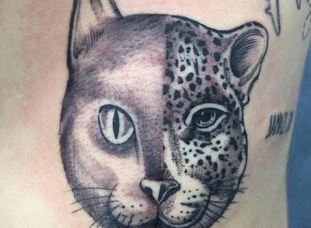 #1135 tatouage chat | American Body Art