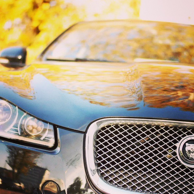 Instagram - #AUTUMN #JAGUAR #XF
